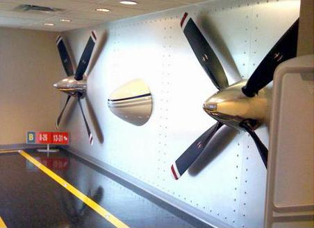 1 Banyan Air Pilot shop