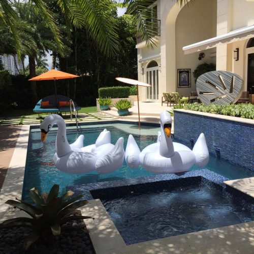 Amfer525PoolWithSwams